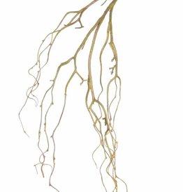 Sauce llorón (Salix), saburral, 105cm