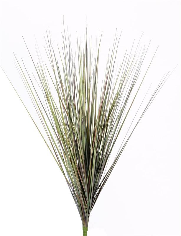 Grassbush, 66cm