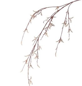 Birch spray with 80fr. (Betula pendula), 91cm