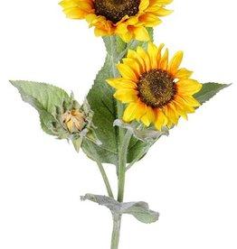 Sunflower (Helianthus) large, x2flrs (ø12/15cm), x1bud, x7lvs, flocked, 86cm