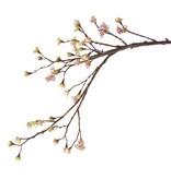 Ahorn-Zweig mit 27 Blüten, 8 Blumen, 111cm