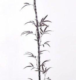 Porcelain bamboe zwart