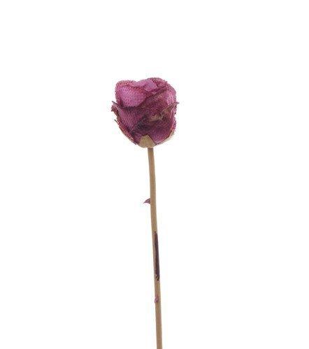"Roos knop groot ""Retro Romance"", x1 no lvs 58cm"