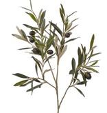 Olivenzweig 104 Blaetter/6 Oliven 55cm