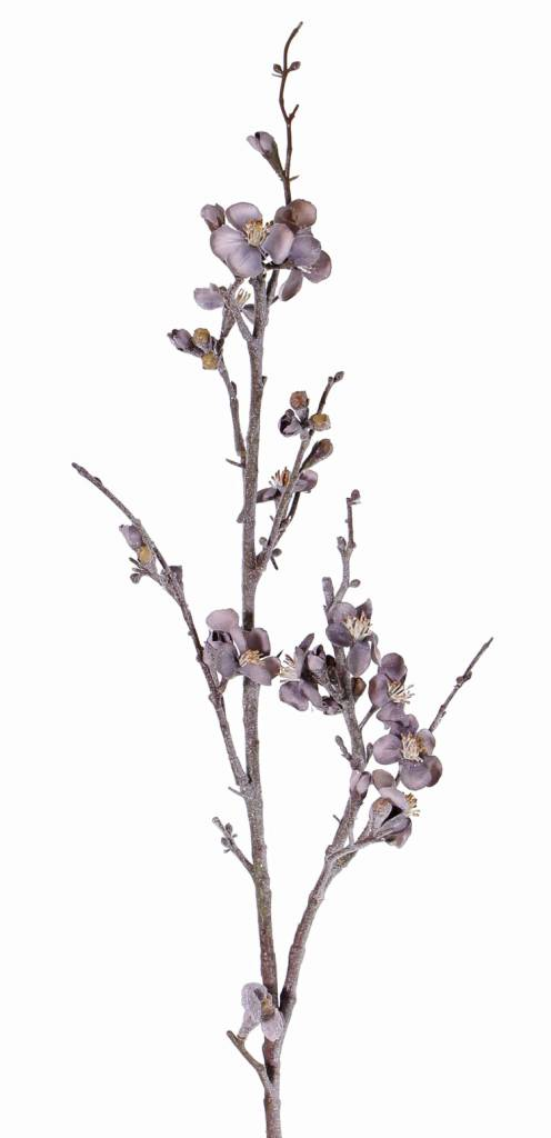 """Twinkle frosted, """"Elegance"""" Quince Blossom 91cm"""