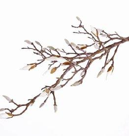 Magnoliaknoptak met 34 knoppen (waarvan 7 open) 104cm