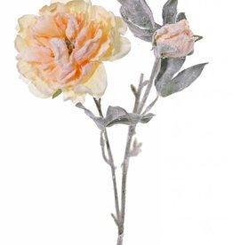 "Pfingstrose, 1 Blume, 1 Knospe, snow, """"pastel winter"""", 61cm"
