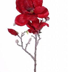 """Magnolienzweig mit """"Winterfrost"""",  2 Blumen, 6 Knospen, 60cm"""