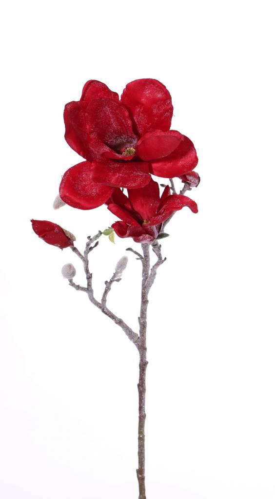 "Twinkle frosted, ""Elegance"" Magnolia 60cm"