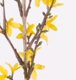 Forsythia branch with 41 flowers, 88 cm, grey-green stem