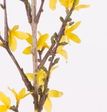 Forsythiatak  met 41 bloemen,  88 cm grijs/groene steel