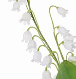 Lily of the valley (Convallaria majalis) bundel x3, x29bells, x2 coated lvs, 36cm