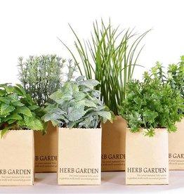 Mix de 6 hierbas aromáticas en maceta de papel, (6.5 x 6.5cm), 6 variado en la caja