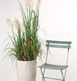 Artificial Reed Grass Plant, x3, 81cm, in plactic pot
