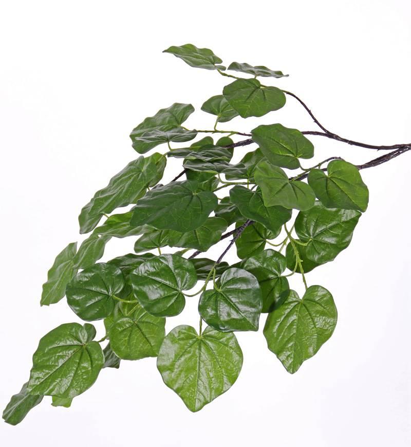 Judasboomtak (Cercis) met 3 vertakkingen, 48 bladeren, 91cm
