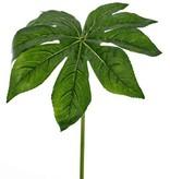 Fatsia leaf  ø33cm, coated,81cm