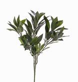 Laurel branch ,74 leaves, 48 cm - fire retardant