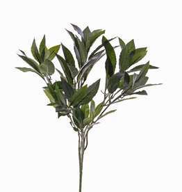 Laurel branch, 74 leaves, 48 cm - fire retardant