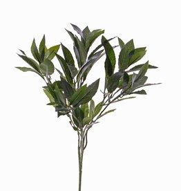 Lorbeerblattzweig mit 74 Blättern,  48 cm, schwer entflammbar