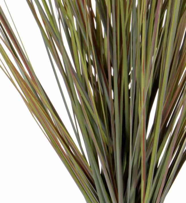 Grastoef x5 66cm