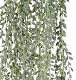 Senecio radicans hanger,  111 blaadjes, full plastic, grijsgroen, 85 cm