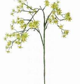Deutzia con 92 flores,  90cm