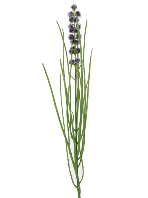 Bloeiend gras, 50cm - ACTIE
