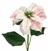 Christstern Poinsettia 3 Blaetter 70cm