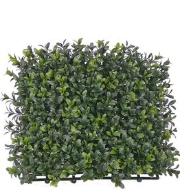 Buxus natural haag element UVSAFE 25*25cm 300tips - speciale prijs