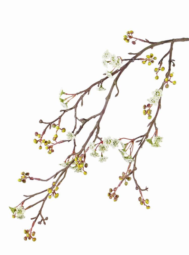 Ahornzweig, (Acer) , 10 Blumengruppen & 15 Gruppen mit Beeren, 96 cm