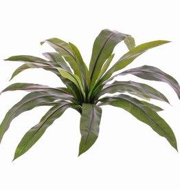 Asplenium, 18 hojas, 73cm, UVsafe