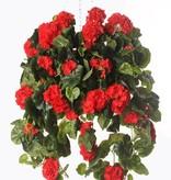 Geranium (french), Pelargonium peltatum, 10 branches, 232 flowers, 128 leaves, 70cm
