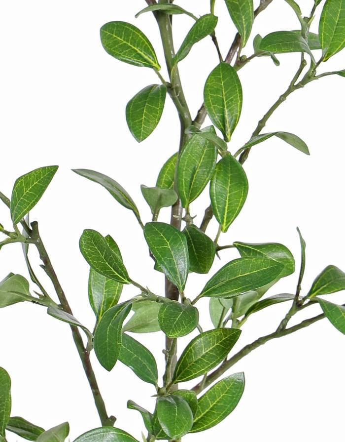 Privet Leaf Branch, 113 leaves (43 sets),  with  plastic green/brown stem, 104 cm
