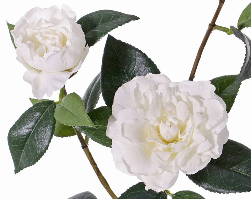 """Camelliaspray """"de luxe"""" 2 flowers, 1 bud & 22 leaves, coated stem, REAL TOUCH,  86cm"""