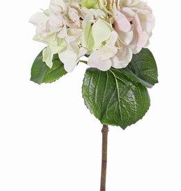 "Hortensia ""Sensitive"", flor de Ø 18cm, 52 flores & 5 hojas, 60cm"