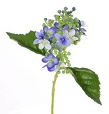 "Hortensia  ""fresh bloom"", 15 bloemen,  2 bladeren,  & zachte knoppen,  33 cm"