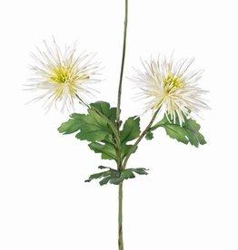 """Chrysanthemen """"spider"""" 3 Blumen, 4 Blätter, 73 cm"""