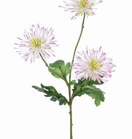 """Crisantemos """"spider"""", 3 flores y 4 hojas, 73 cm"""