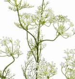 Dille (Anethum),  11 Blumengruppen, 13 Blättersets, (Draht im Kopf) 78 cm