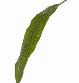 "Cordylineblad ""Sapa"",  Ø 10 * 55cm, (PE), 88cm"