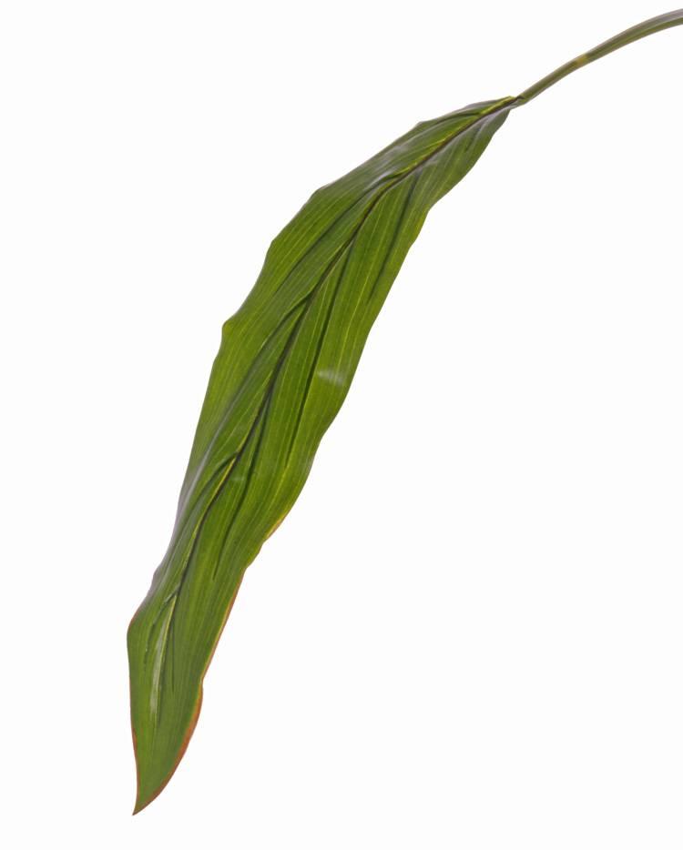 """Keulenlilien-Blatt (Cordyline) """"Sapa"""", groß, Ø 10 * 55cm, (PE), 88cm"""