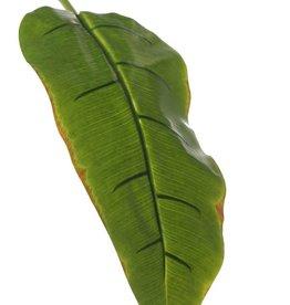 Banana leaf, medium, coated, 96 cm