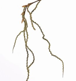 Weidenzweig, hängend, knorrig, x5, 127 cm