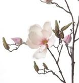 Magnolienzweig mit 4 Blüten,  22 Knospen, 107cm