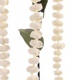 "Amaranthus ""de luxe"" mit 3 Blueten und 3 Blaetter, coated stem 73cm"
