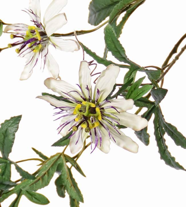 Passionflower Spray