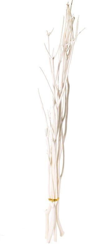 Mitsumata deco branches, set of 5 pieces, 105 cm, in polybag
