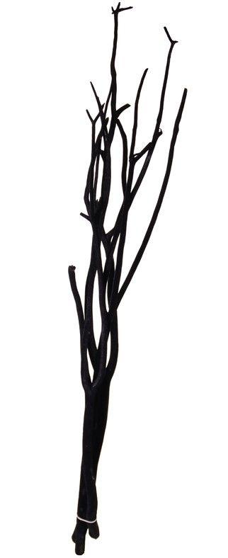 Mitsumata Dekozweige, Satz von 3 Stck, 105 cm, verpackt im Polybag