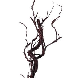 """Deco twig, """"curly"""", coated, 55cm"""