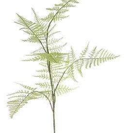 "Asparagus branch ""Bella"" medium, 7 leaves., 86cm"
